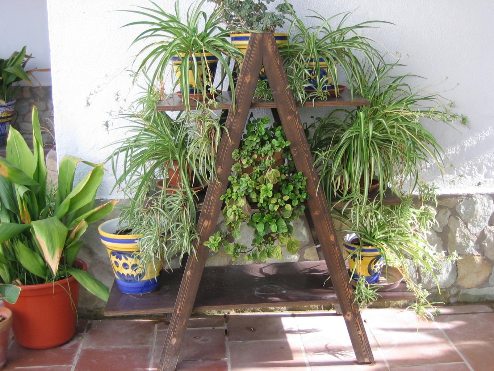 Escalera de madera he pensado convertirla en soporte para - Jardineras en escalera ...