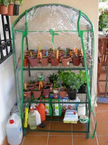 invernadero-estanteria.jpg