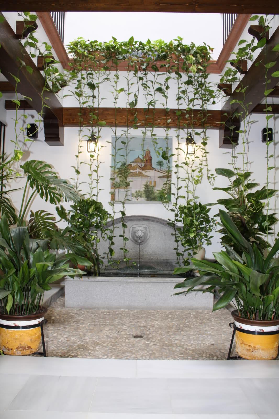 Iluminaci n para plantas en un patio techado qu luz - Iluminacion para plantas ...