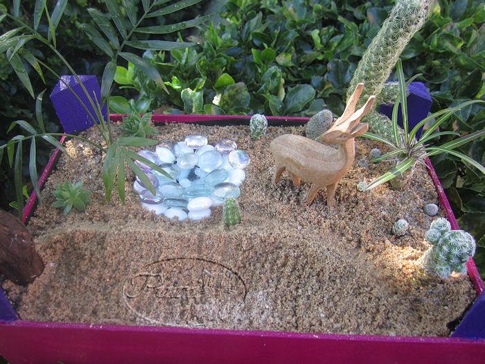 jardin+miniatura+8+septiembre+2011+%25281%2529.jpg