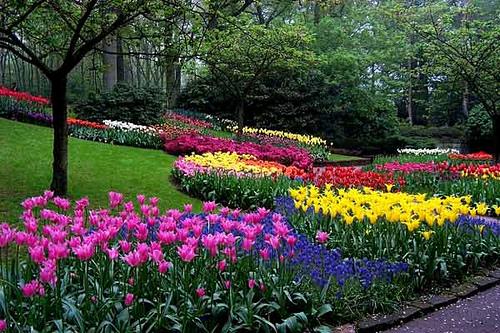 jardin-verano.jpg