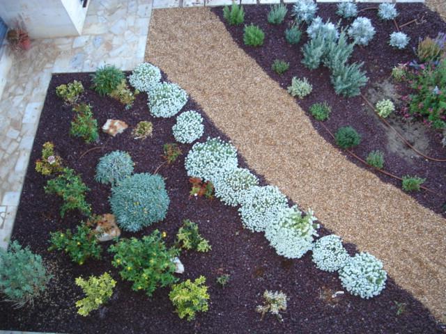 jardin3%20017.jpg