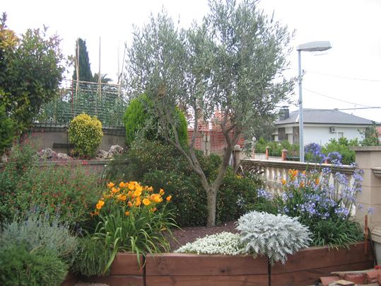 jardin_28_023.jpg