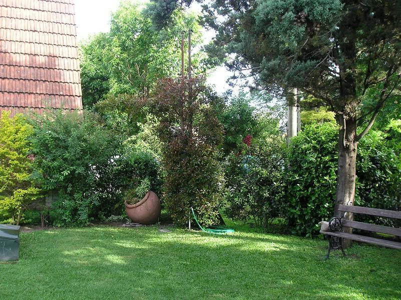 jardindeOfelia.jpg