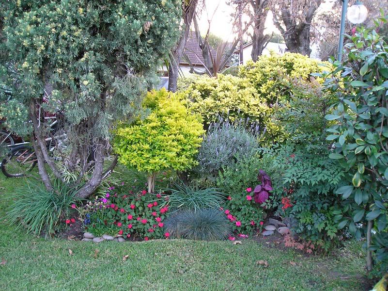 jardinofelia.jpg