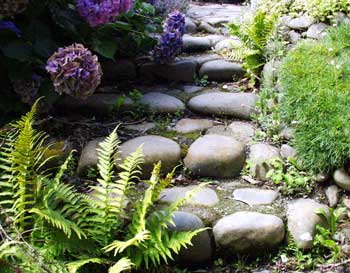 laundry-path-stone-ferns-hydrangeas.jpg