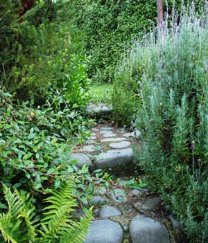 laundry-path-stone-lavender-ferns.jpg