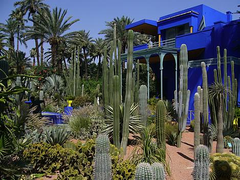 marrakech_jardin_majorelle.jpg