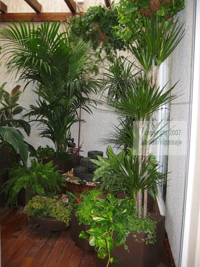 Patio de luces o atrio ayuda para decorar con plantas - Luces para plantas de interior ...