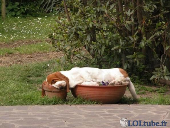 meilleur-endroit-pour-dormir.jpg