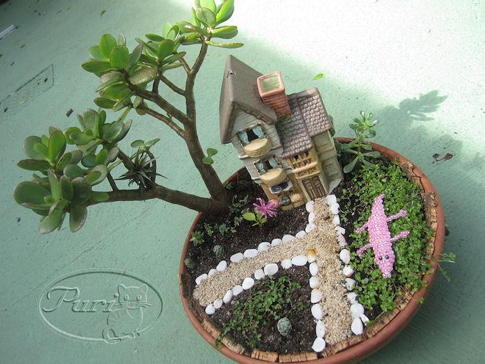 mini+jardin+3+septiembre+2011+%25284%2529.jpg