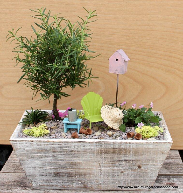 miniature_garden_30.JPG