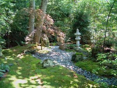 musgo-el-jardin-L-IEPJjC.jpe