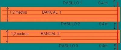 normal_bancals2.JPG