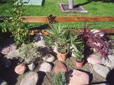 Arriate con arom ticas y consejos para tomillo lavanda y - Arriate jardin ...