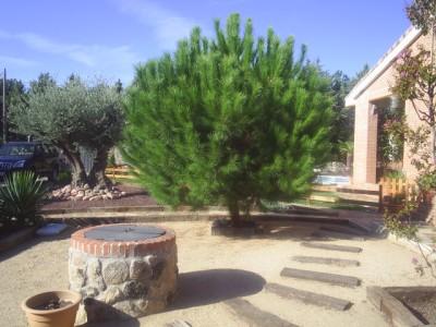 normal_jardin%20y%20claudia%202005%20014.jpg