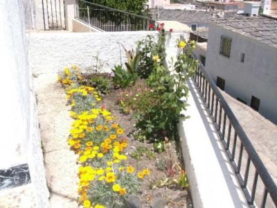 normal_jardin%7E0.JPG