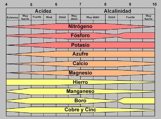 o_Biodisponibilidad%20UNEX.JPG