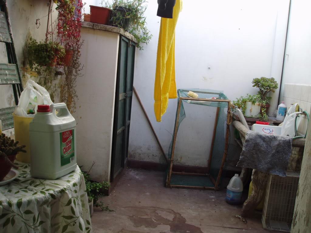 Ayuda con patio peque o for Patio chico con pileta