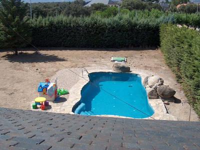 Elegir plantas para alrededor de piscina en madrid for Piscinas diferentes en madrid