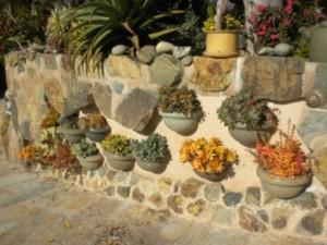 Planted-Wall-300x225.jpg