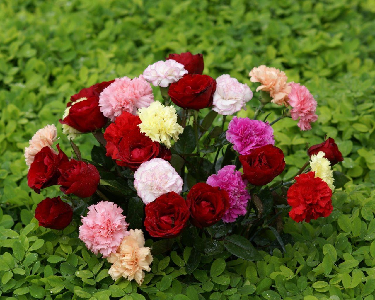 ramo-de-flores-870.jpg