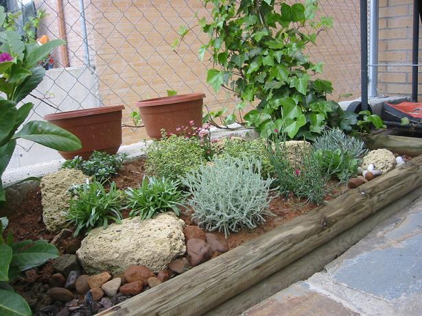 Fotos de mi proyecto de rocalla ya realizado y nuevas fotos for Plantas para rocallas