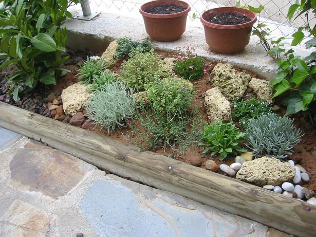 Fotos de mi proyecto de rocalla ya realizado y nuevas fotos - Plantas para rocallas ...