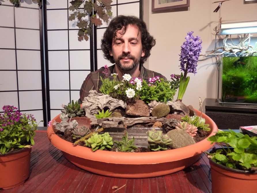 jardin miniatura Jardines En Miniatura Pgina 6