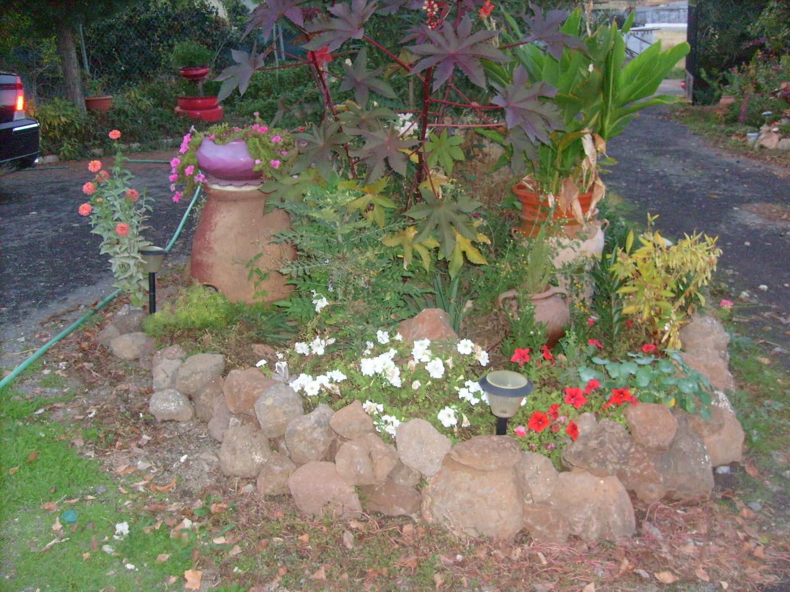 Rincones y plantas de mi jard n p gina 13 for Plantas para mi jardin
