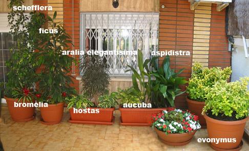 SANTA_COLOMA1-7DESPUES.jpg