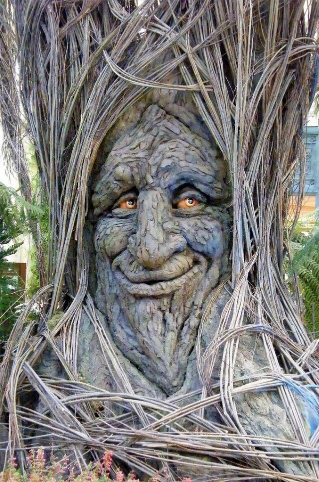 Strange_FunnyTrees_Have_a_Look__14se.jpg