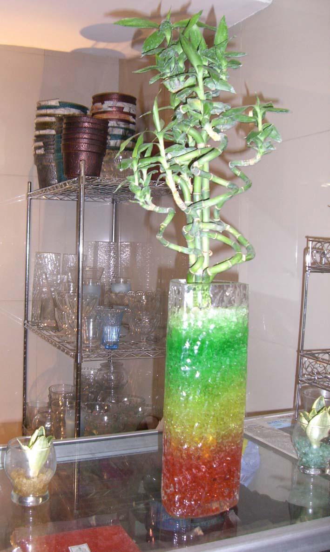 tanaman-dengan-hidrogel.jpg