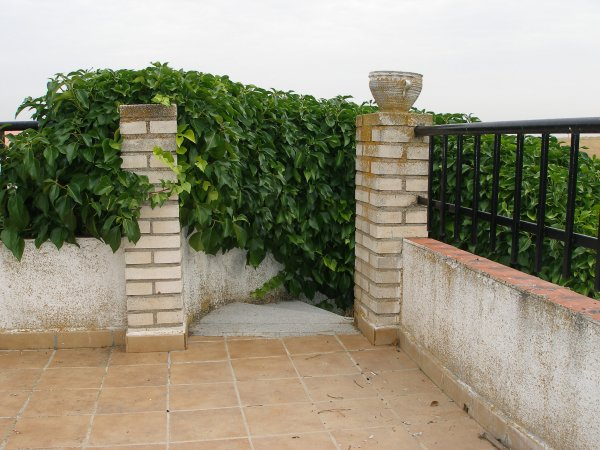 terraza2.jpg