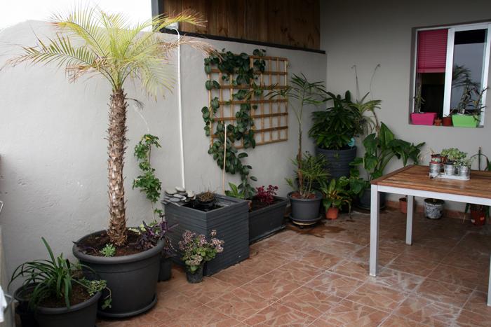 terraza6.jpg