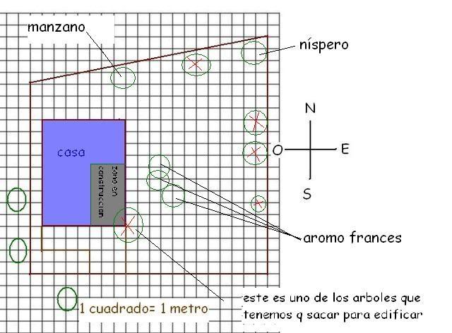 thplanito.jpg