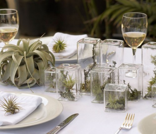 using-mini-terrariums-in-interior-decorating-4-500x428.jpg