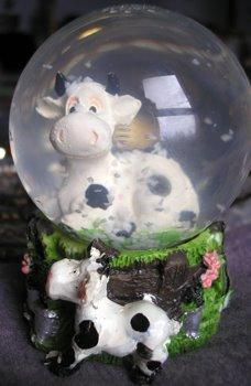 vaca06.jpg