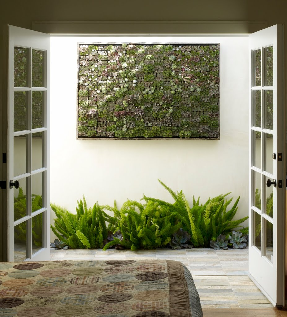 vertical-succulent-garden-at-ames-cottage.jpg
