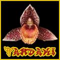 Tambaki